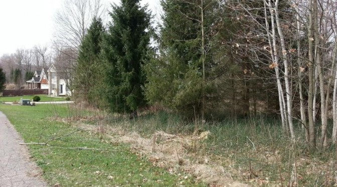 Building Lot to be Auction in Otsego MI
